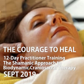 The Courage To Heal – 12-Day Practitioner Program